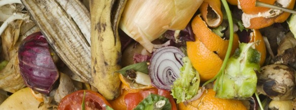 organics-food1 (1)